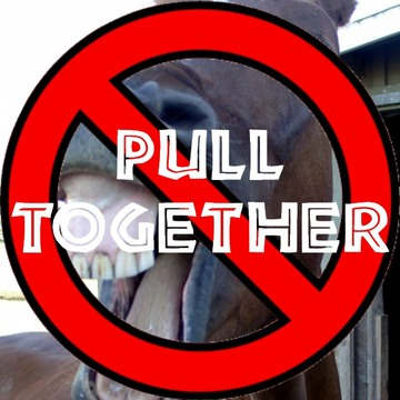 Pull Together SQUARE